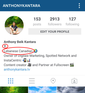 Instagram profile personal info